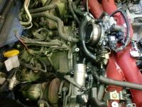 CIMG5496.JPG
